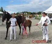 Norwegian DWB-foals to Elite Mare show
