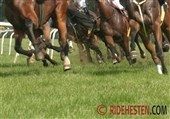 Grand National steeplechase 2013 - Video