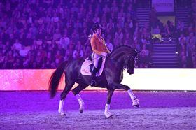 Træning af heste/pony