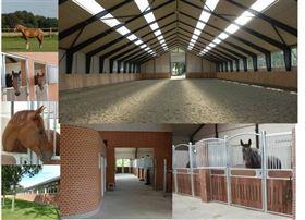 Lille lejlighed på hestepension v/Skanderborg udlejes til m/k der vil hjælpe med staldvagter