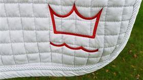 Dressurunderlag med DV-Logo