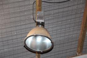 Glødelamper til ridehal