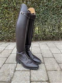 Cavallo Polo Novellus