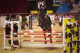 Maks 1'er pony søges til udlån