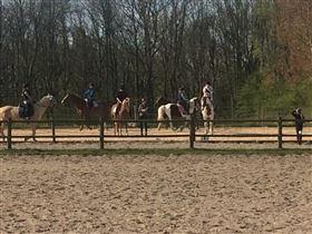 Rideskoleunderviser
