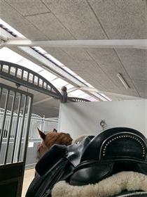 Hennig sadel