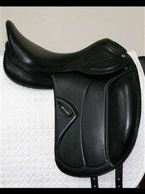 Amerigo Classic Dressage Pinerolo