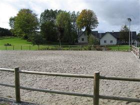 Opstaldning i lille stald tilbydes