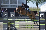 Hest til salg - LUPI