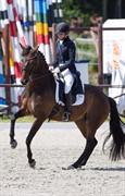 Horse for sale - Miss Matrix
