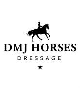 Horse for sale - TOP DRESSURHEST
