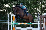 Horse for sale - TEMBA S