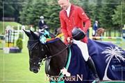 Horse for sale - M.B. SIRI-SIX