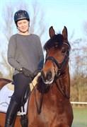 Hest til salg - FACIT PH