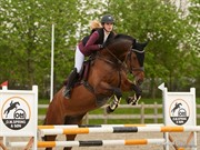 Horse for sale - FARETINA
