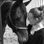 Horse for sale - DOMINA AMIKA