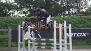 Horse for sale - TEGLOVNENS CACIANJO