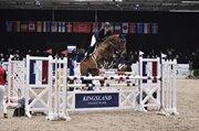 Hest til salg - LOUISIANA