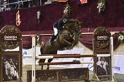 Hest til salg - MR. RUBBY BUBBEL