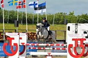 Horse for sale - Pigalle