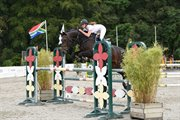 Horse for sale - Junior hest!