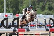 Horse for sale - Killegar Cloonisle Hope