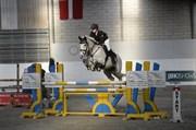 Hest til salg - CASTELLA