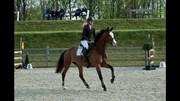 Horse for sale - CARA MIA