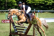 Horse for sale - Maribos Mr. Perfect
