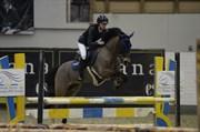 Hest til salg - MARRONDALES FLOYD