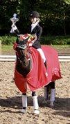 Horse for sale - BLOKLAND'S HOEVE'S VITA NOVA