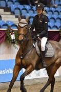 Hest til salg - TRELDEGÅRDS HOT SHOT
