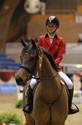 Horse for sale - HIS ROYAL