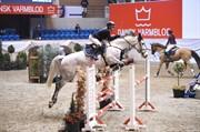 Horse for sale - DEGAGNA N