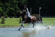 Horse for sale - TOFTLUND'S PRINS-CHI
