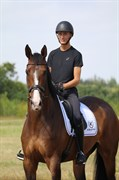 Horse for sale - TEMPSON