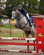 Hest til salg - LANKILL PENNY SWEET
