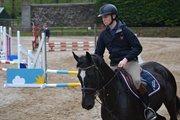 Horse for sale - WSF Hallo Indigo
