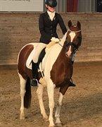 Hest til salg - Doria