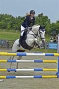 Hest til salg - Clements Spook
