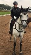 Hest til salg - Lunatica