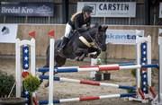 Hest til salg - SKOVLY'S HEIDI