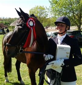 Dressur heste i ridning eller kommission