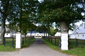 Komplet hestecenter udlejes på herregård ved Skanderborg