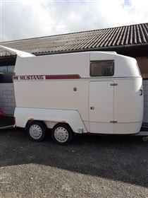 Super velholdt Mustang trailer