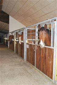 Lerbækhus Hestepension